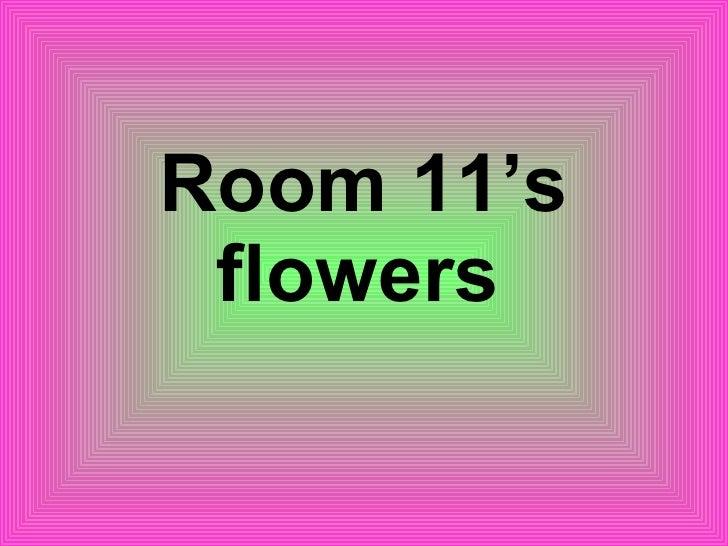 Room 11's flowers