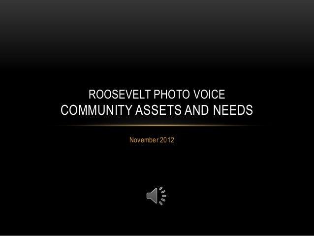 Roosevelt, NY Photo Voice project