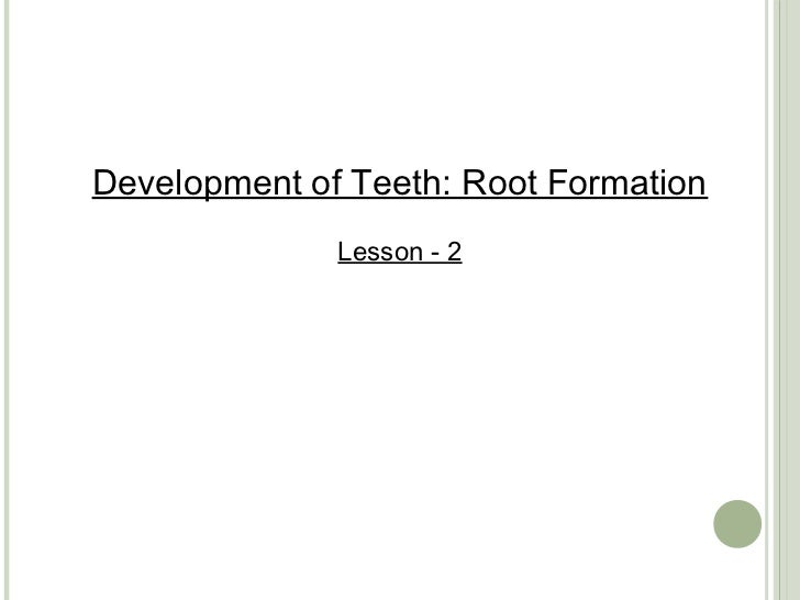 Development of Teeth: Root Formation              Lesson - 2