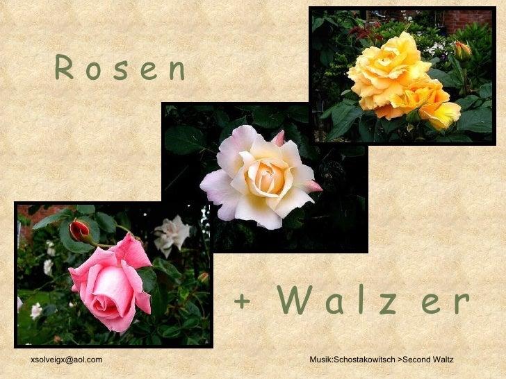 R o s e n   +  W a l z  e r  [email_address] Musik:Schostakowitsch >Second Waltz