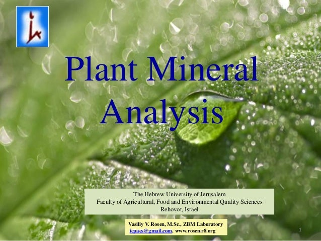 Plant Mineral  Analysis                The Hebrew University of Jerusalem  Faculty of Agricultural, Food and Environmental...