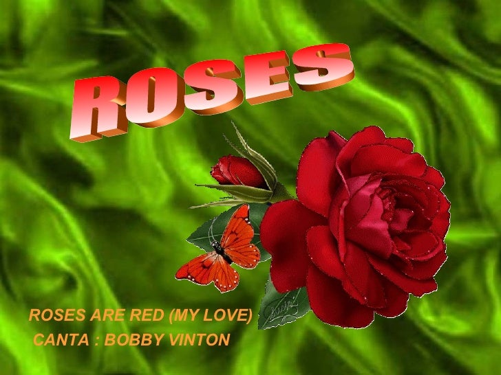 ROSES  ROSES ARE RED (MY LOVE) CANTA : BOBBY VINTON