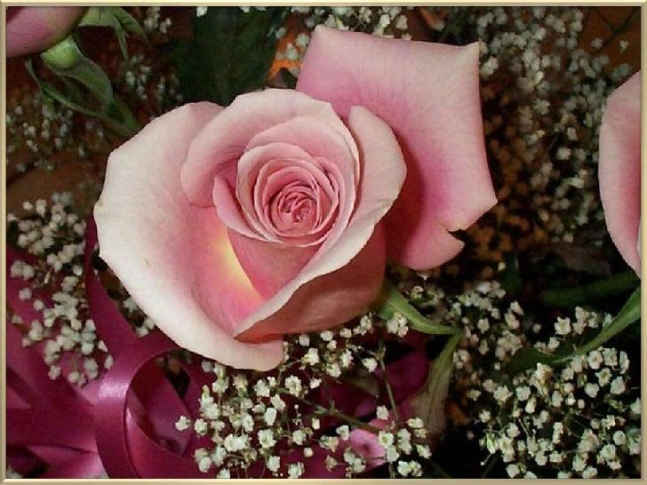 "Images : InternetMusic: Edith Piaf ""Je ne regretterien""                               Adriana"