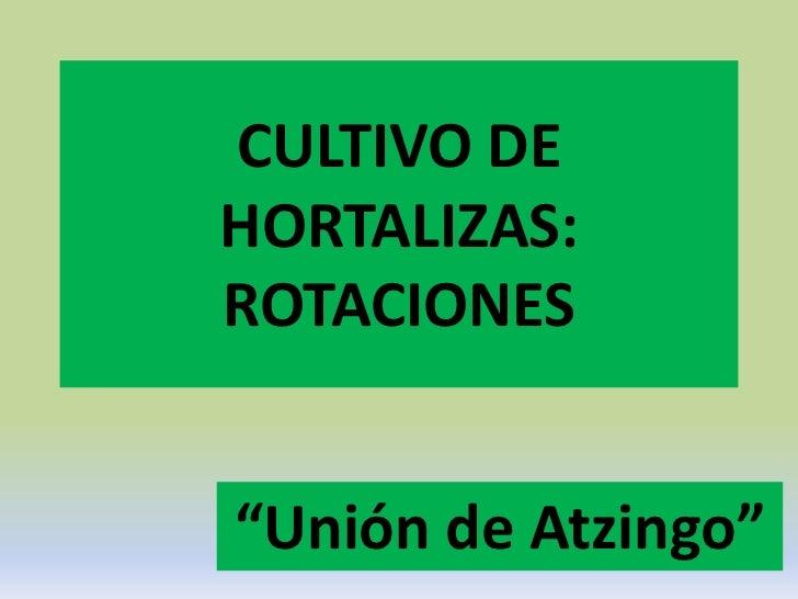 """CULTIVO DEHORTALIZAS:ROTACIONES""""Unión de Atzingo"""""""