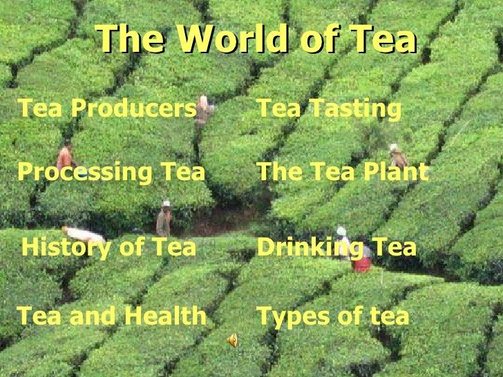 The World of Tea The World of Tea Processing Tea History of Tea Tea and Health Tea Producers Tea Tasting Types of tea Drin...