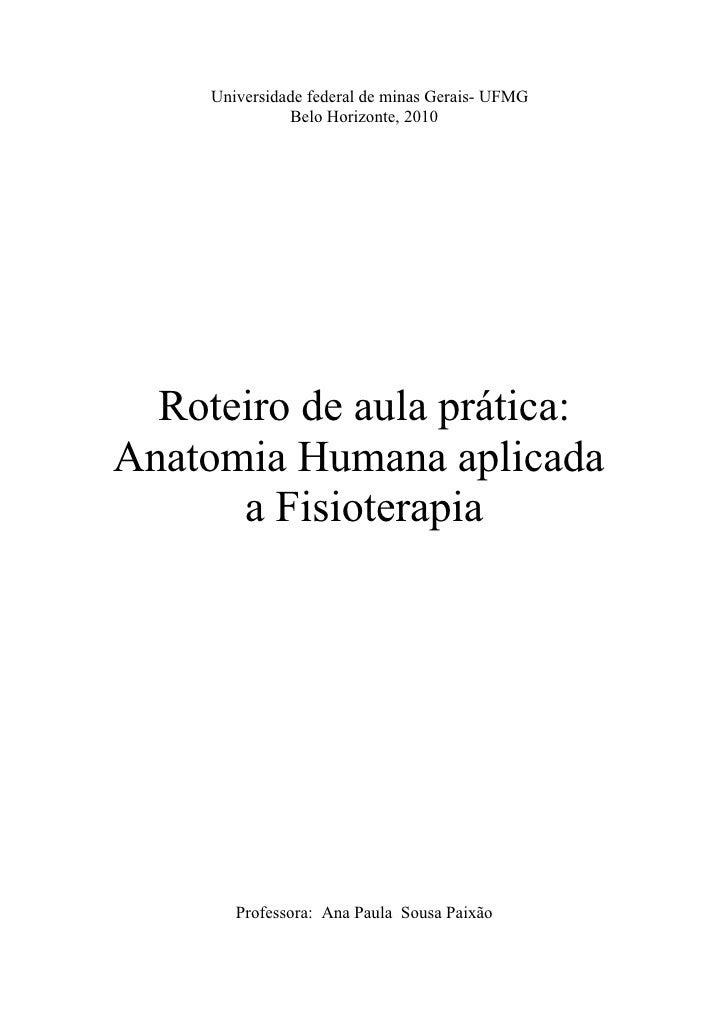 Universidade federal de minas Gerais- UFMG                Belo Horizonte, 2010       Roteiro de aula prática: Anatomia Hum...