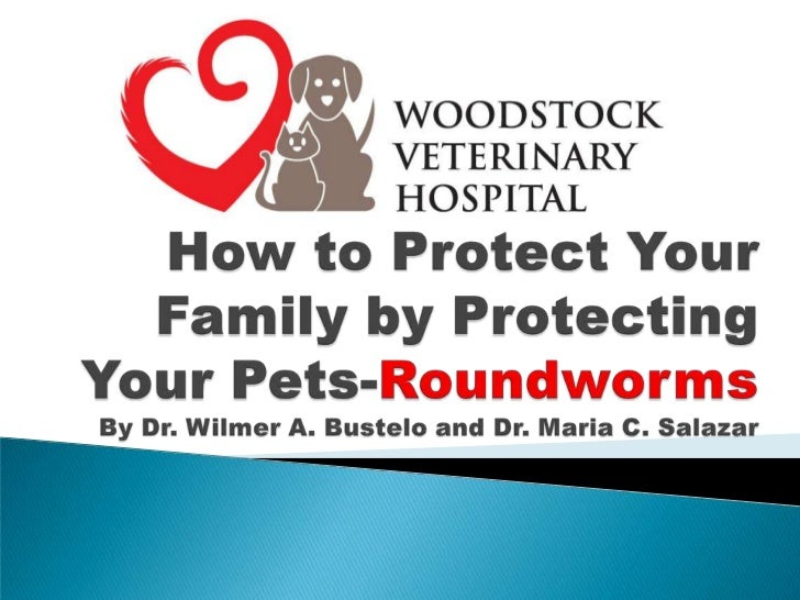 How to Protect Your Family by Protecting Your Pets-RoundwormsBy Dr. Wilmer A. Bustelo and Dr. Maria C. Salazar<br />