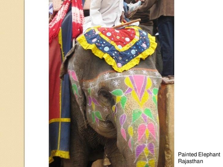 Painted ElephantRajasthan