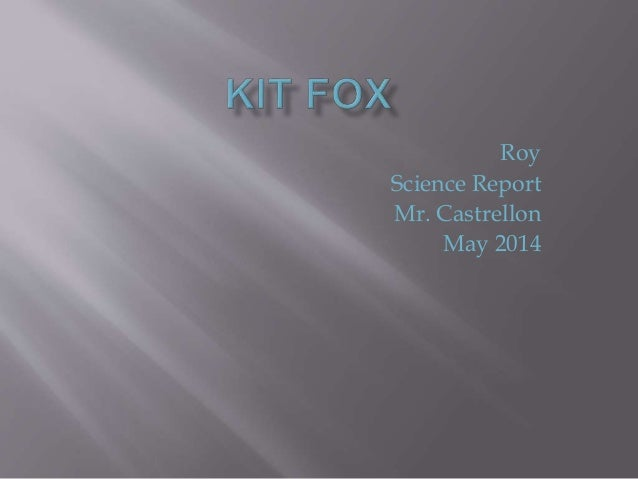 Roy Science Report Mr. Castrellon May 2014