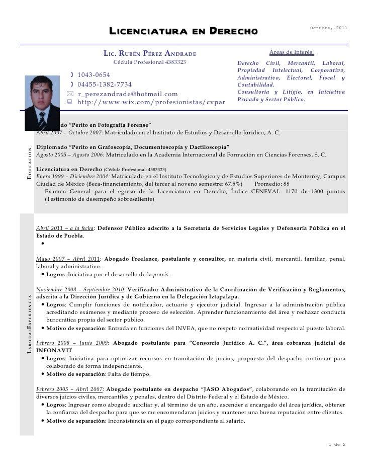 Encantador Ejemplo De Currículum Vitae Judicial Foto - Colección De ...