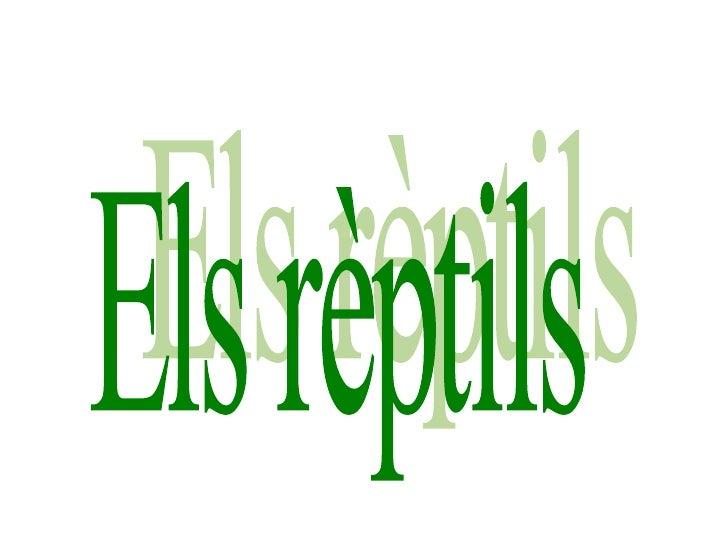 Els rèptils