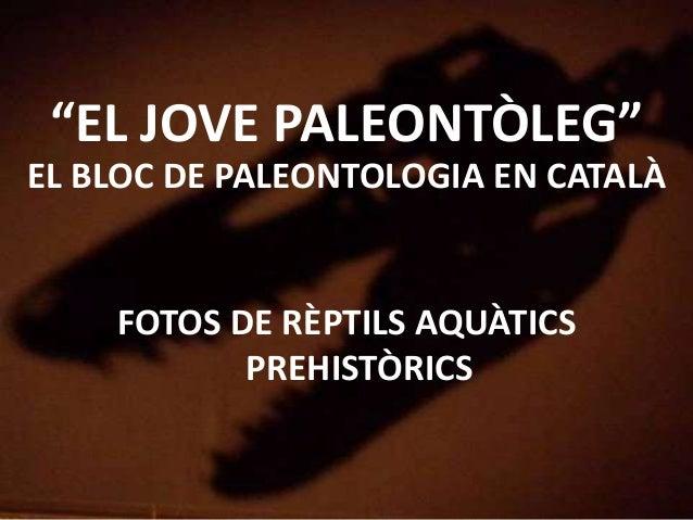 """""""EL JOVE PALEONTÒLEG"""" EL BLOC DE PALEONTOLOGIA EN CATALÀ FOTOS DE RÈPTILS AQUÀTICS PREHISTÒRICS"""