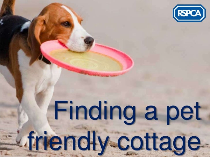 Finding a petfriendly cottage