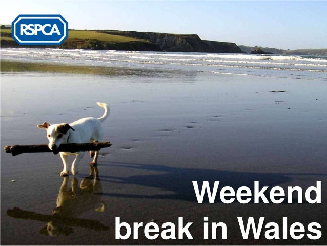 RSPCA - Weekend Break in Wales