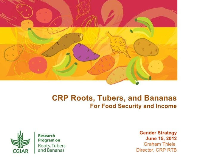 CRP Roots, Tubers, and Bananas         For Food Security and Income                        Gender Strategy                ...