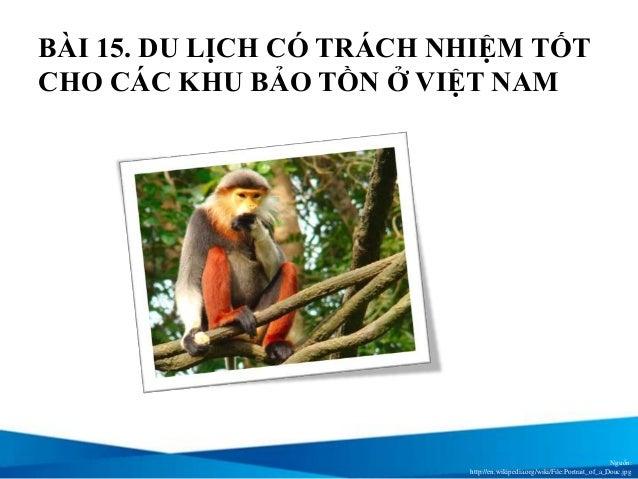 Bài 15: Du lịch có trách nhiệm tốt cho các khu bảo tồn ở Việt Nam