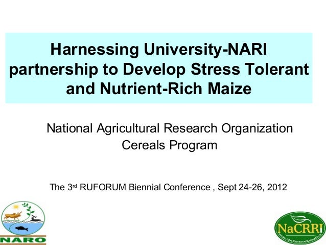 Harnessing University-NARIpartnership to Develop Stress Tolerant       and Nutrient-Rich Maize    National Agricultural Re...