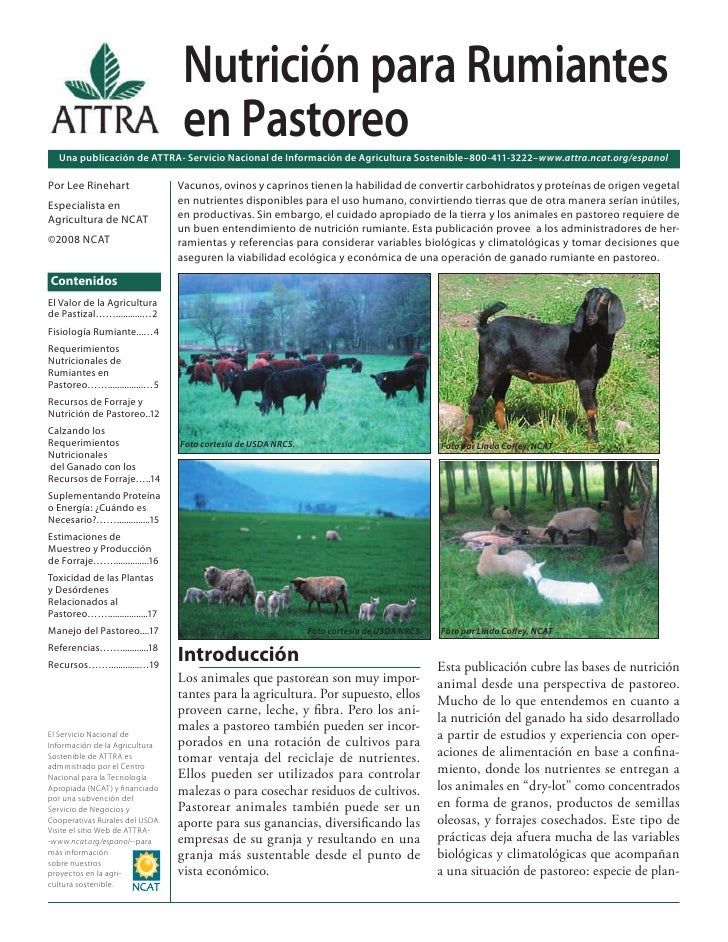 Nutrición para Rumiantes en Pastoreo