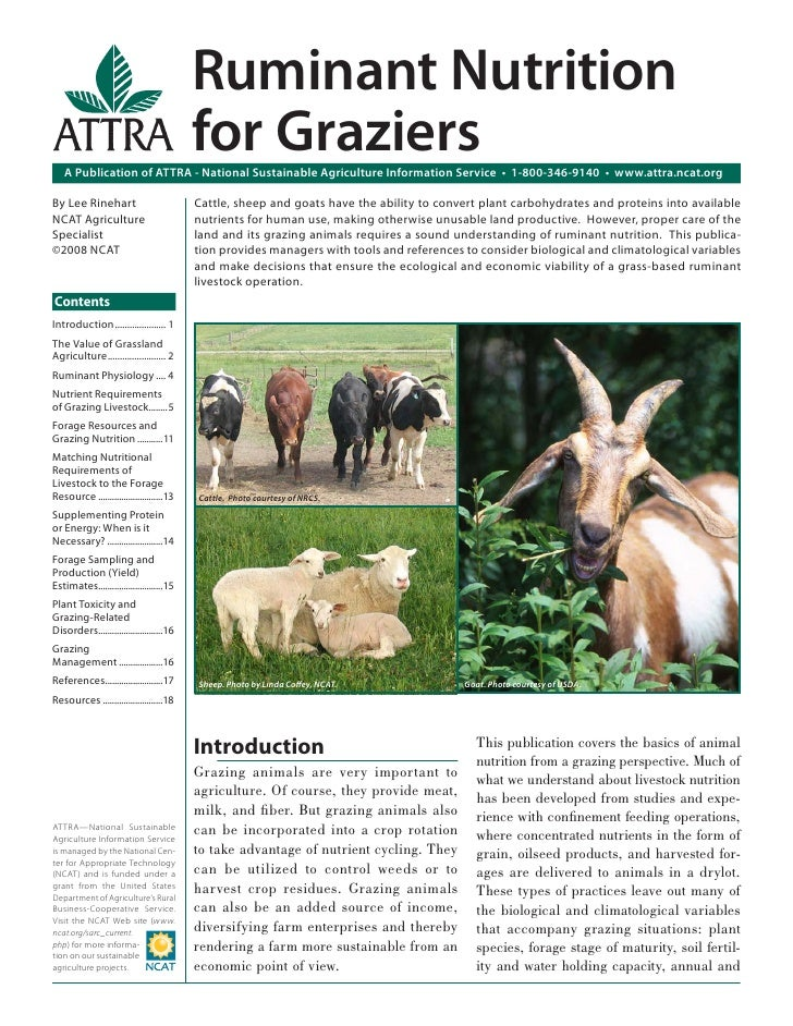 Ruminant Nutrition                                          for Graziers   A Publication of ATTRA - National Sustainable A...
