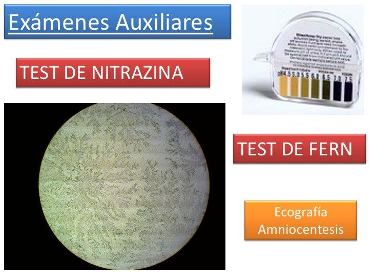 Exámenes Auxiliares TEST DE NITRAZINA                      TEST DE FERN                          Ecografía                ...