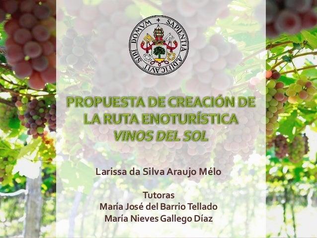 Larissa da Silva Araujo Mélo Tutoras María José del BarrioTellado María NievesGallego Díaz
