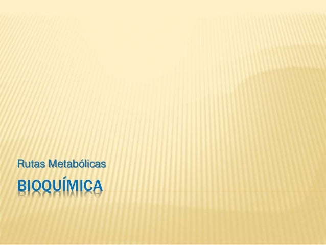 BIOQUÍMICA Rutas Metabólicas