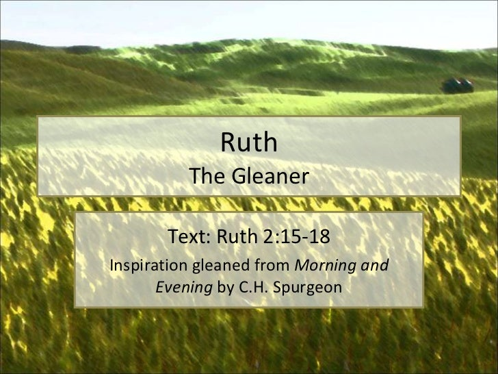 Ruth The Gleaner Text: Ruth 2:15-18 Inspiration gleaned from  Morning and Evening  by C.H. Spurgeon
