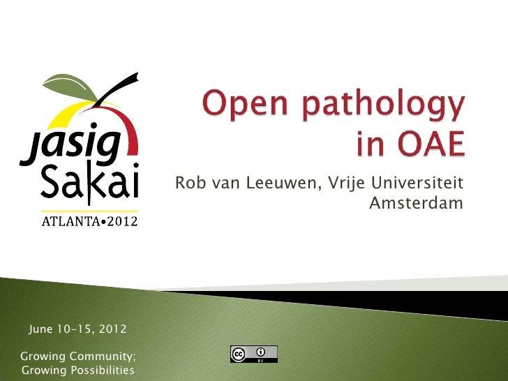 Rob van Leeuwen, Vrije Universiteit                                               Amsterdam June 10-15, 2012Growing Commun...