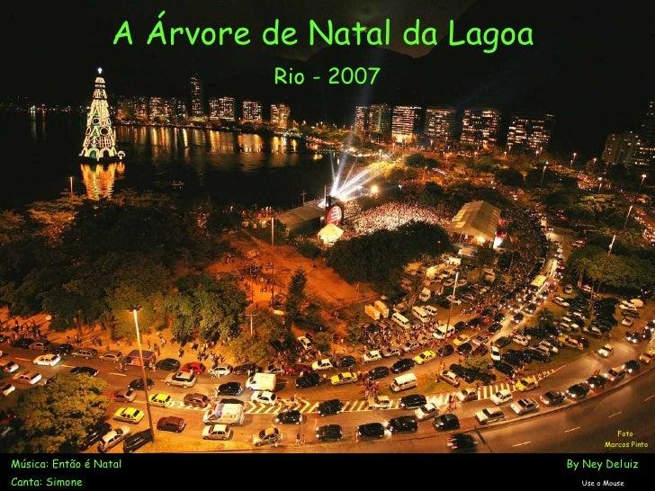Árvore da Lagoa   Rio de Janeiro