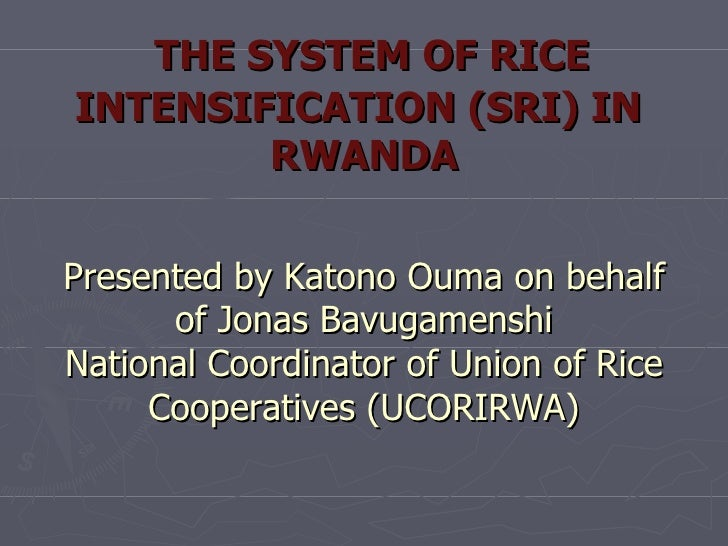 THE SYSTEM OF RICE INTENSIFICATION (SRI) IN  RWANDA