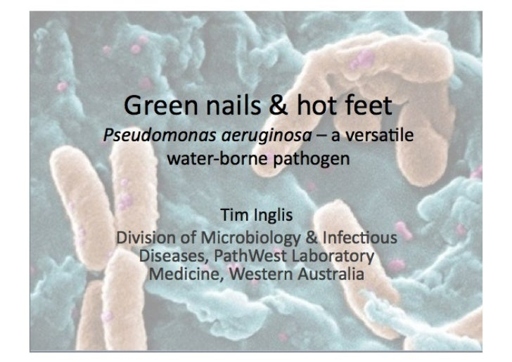 Pseudomonas folliculitis