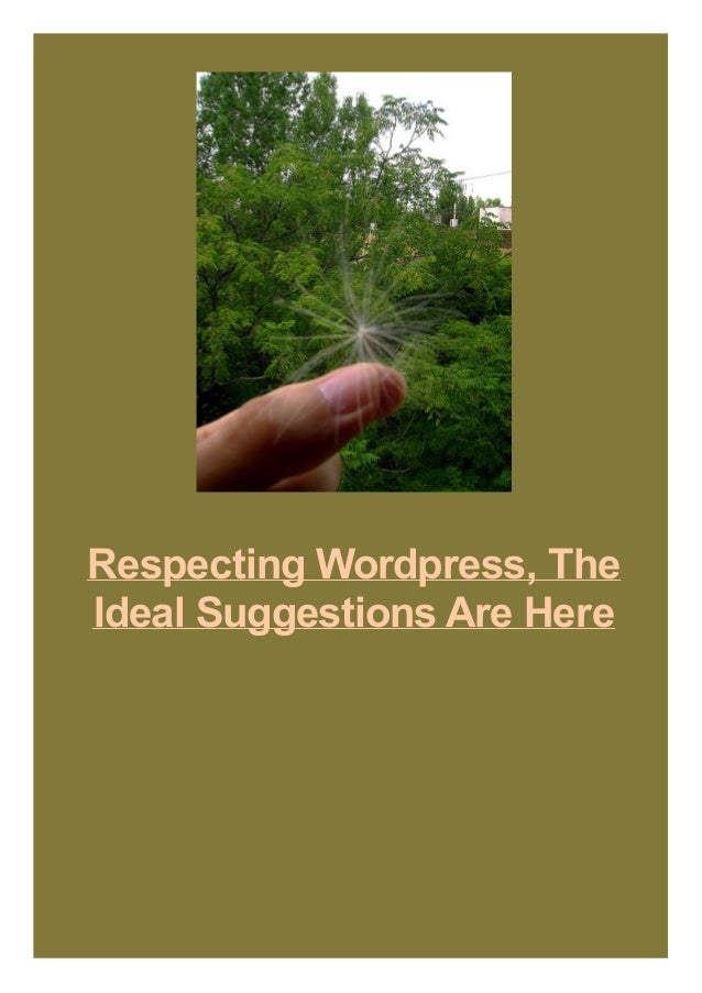 Respecting Wordpress, The Ideal Suggestions Are Here