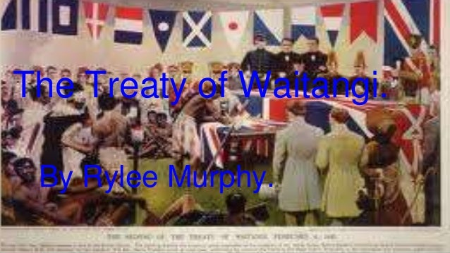 The treaty of waitangi essays