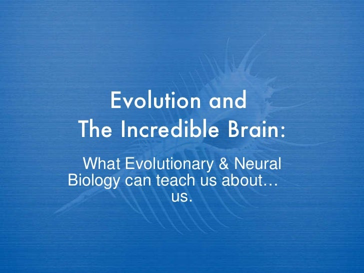Evolution and  The Incredible Brain: What Evolutionary & Neural Biology can teach us about…  us.
