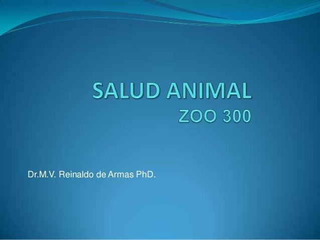 Dr.M.V. Reinaldo de Armas PhD.