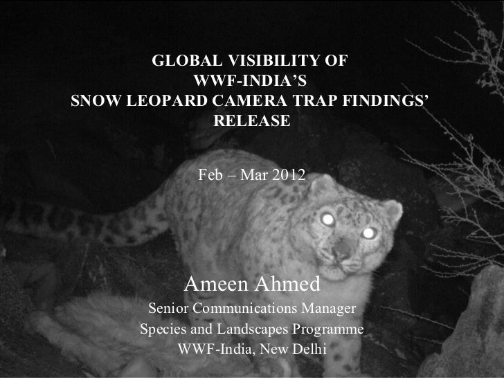 GLOBAL VISIBILITY OF WWF-INDIA'S SNOW LEOPARD CAMERA TRAP FINDINGS' RELEASE, 2012