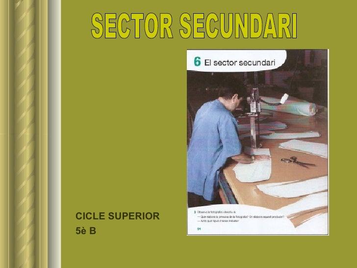 <ul><li>CICLE SUPERIOR </li></ul><ul><li>5è B </li></ul>SECTOR SECUNDARI