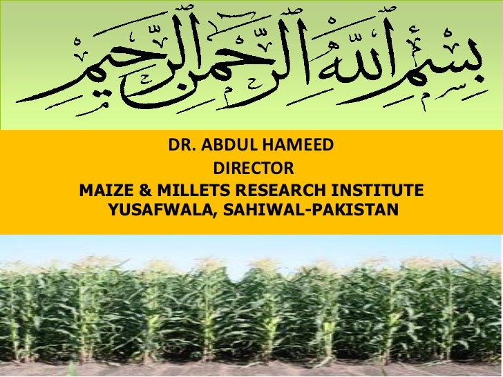 DR. ABDUL HAMEED                 DIRECTOR    MAIZE & MILLETS RESEARCH INSTITUTE      YUSAFWALA, SAHIWAL-PAKISTAN1         ...
