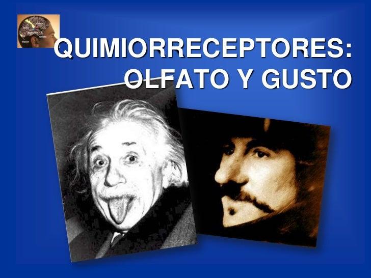 QUIMIORRECEPTORES:OLFATO Y GUSTO<br />
