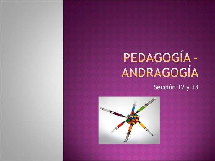 Andragogia vs Pedagogia