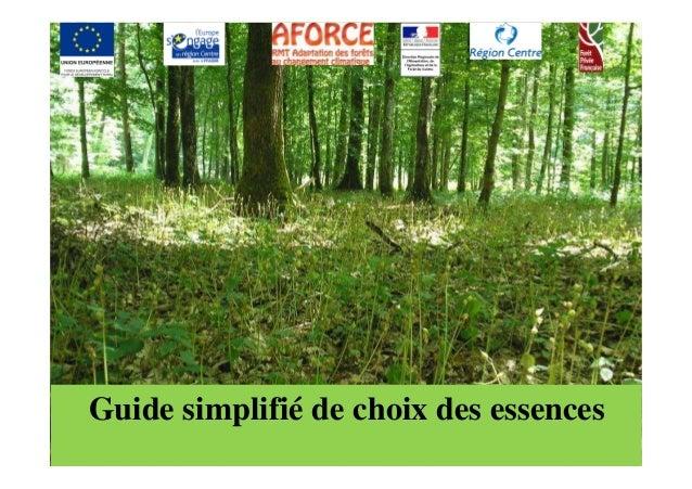 Guide simplifié de choix des essences