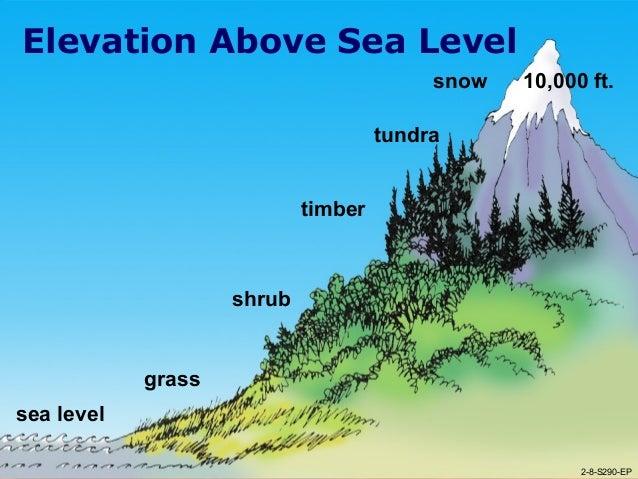 World Tour Terms FlipQuiz - Level above sea level