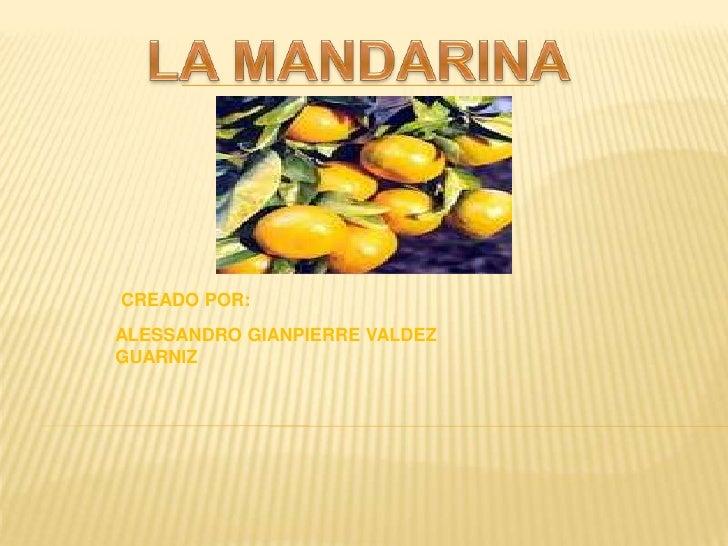 S3 D 28 PresentacióN La Mandarina