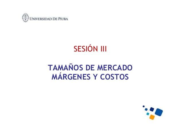 SESIÓN III TAMAÑOS DE MERCADO MÁRGENES Y COSTOS
