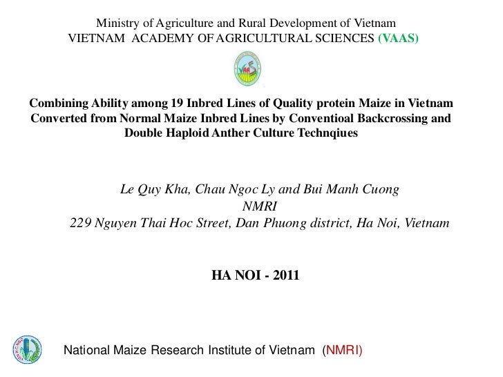 S5.2  Combining Ability among 19 Inbred Lines of Quality protein Maize in Vietnam Converted from Normal Maize Inbred Lines by Conventioal Backcrossing and Double Haploid Anther Culture Technqiues