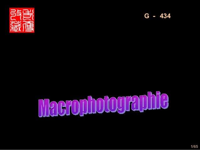 G - 434美丽的微距摄影微距摄影                    1/65