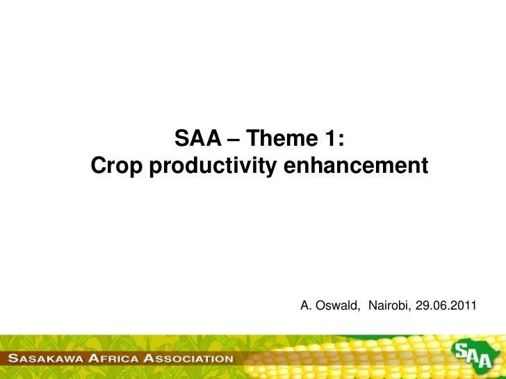 SAA – Theme 1:<br />Crop productivity enhancement<br />A. Oswald,  Nairobi, 29.06.2011<br />