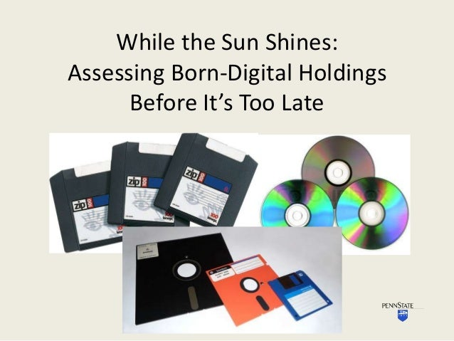 While the Sun Shines: Assessing Born-Digital Holdings Before It's Too Late