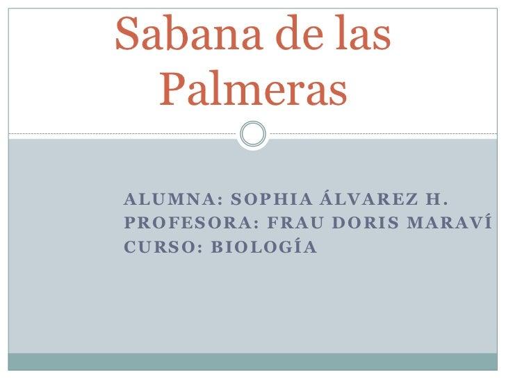 Alumna: Sophia Álvarez H.<br />Profesora: Frau Doris Maraví<br />Curso: Biología<br />Sabana de las Palmeras<br />