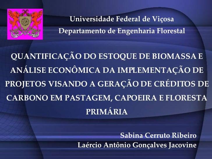 Sabina Cerruto Ribeiro Laércio Antônio Gonçalves Jacovine Universidade Federal de Viçosa Departamento de Engenharia Flores...
